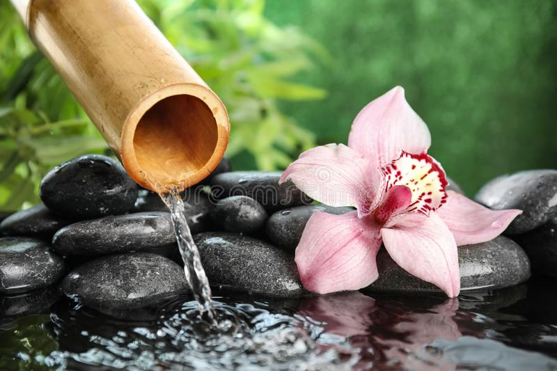 Bamboo fountain with zen stones and flower stock image