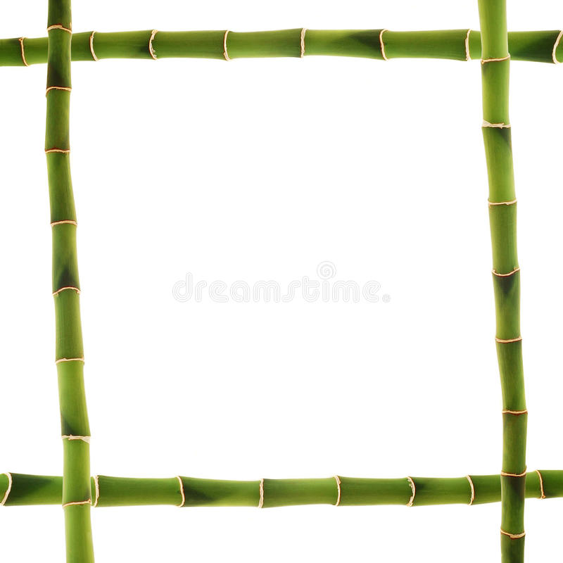 Download Bamboo frame stock image. Image of branch, bamboo, isolated - 16949725