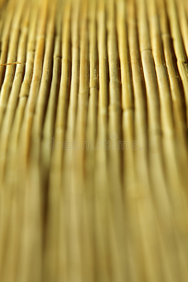 Bamboo frame. Full frame of the bamboo mat royalty free stock photo