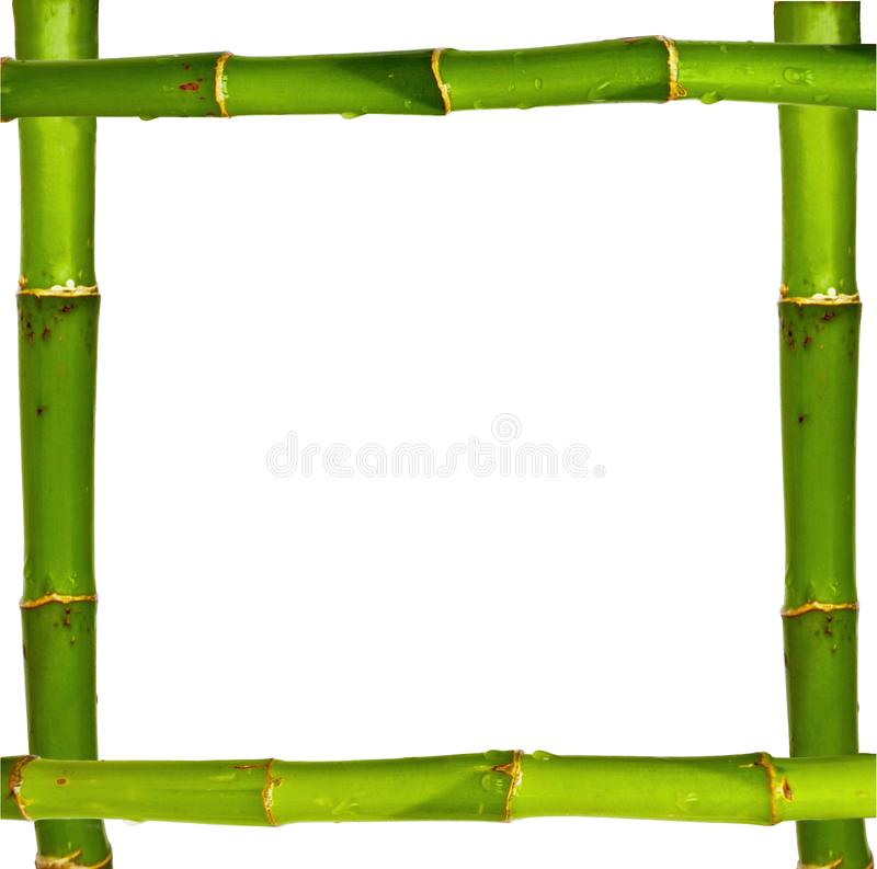 Bamboo frame made of stems isolated on white. Background royalty free stock images