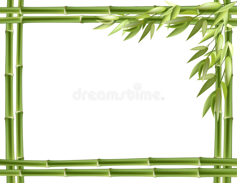 Bamboo frame. Vector background royalty free illustration