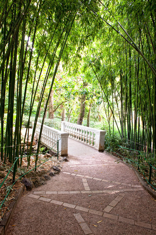 Download Bamboo Garden With River And Bridge Stock Image - Image: 17070707