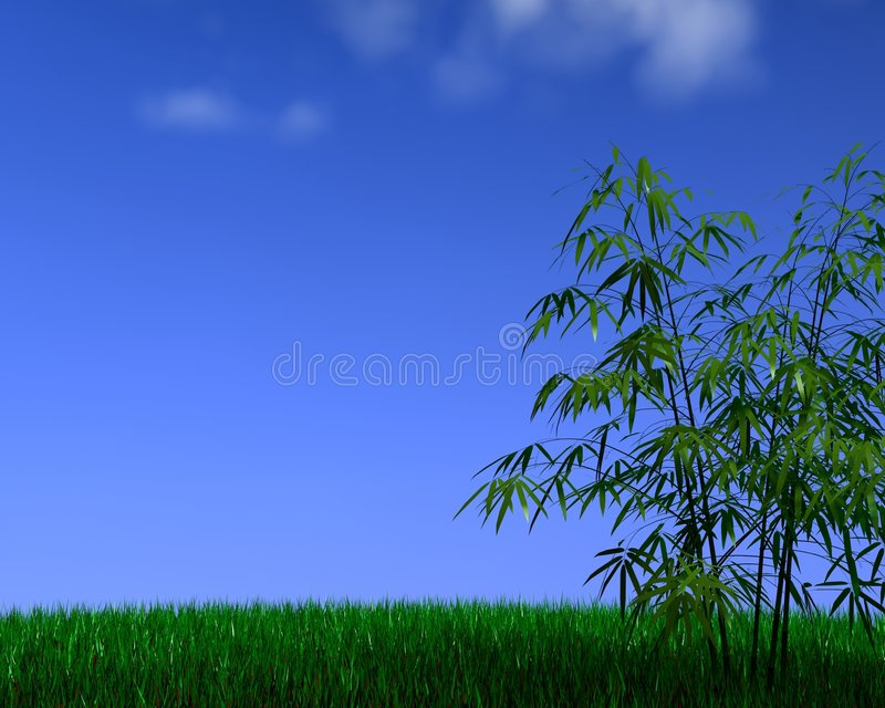 Bamboo&grass vector illustration