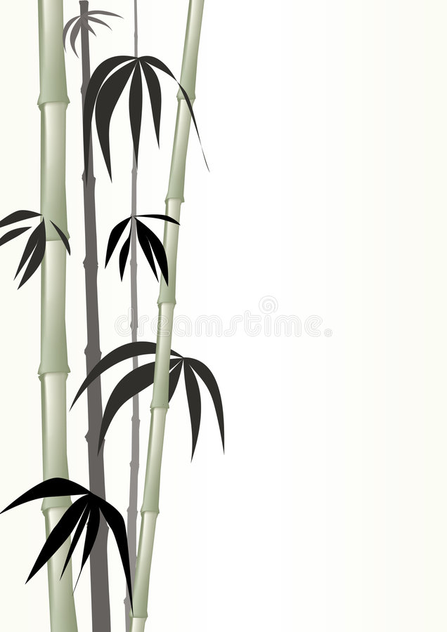 Download Bamboo green stock vector. Image of growth, japanese, summer - 9274810