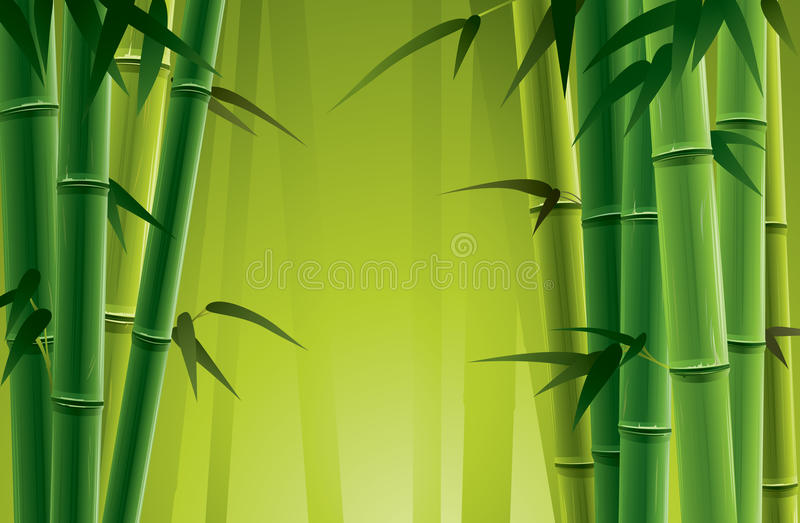Bamboo Grove. Fresh bamboo grove illustration. Only applied in gradient vector illustration
