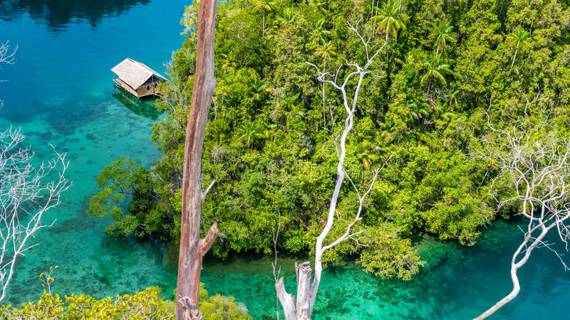 Bamboo Hut in Mangrove near Warikaf Homestay, Kabui Bay and Passage. Gam Island, West Papuan, Raja Ampat, Indonesia.  royalty free stock photos