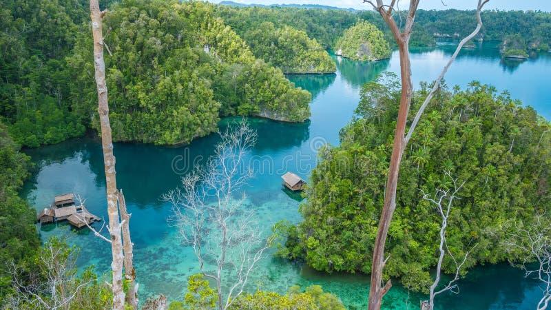 Bamboo Hut in Mangrove near Warikaf Homestay, Kabui Bay and Passage. Gam Island, West Papuan, Raja Ampat, Indonesia.  stock photography