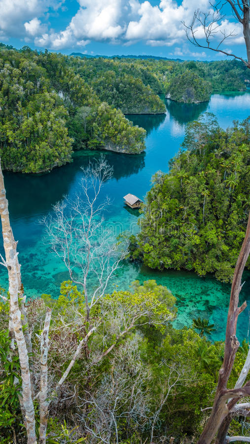 Bamboo Hut in middle of Mangrove near Warikaf Homestay, Kabui Bay and Passage. Gam Island, West Papuan, Raja Ampat. Bamboo Hut in Mangrove near Warikaf Homestay royalty free stock image
