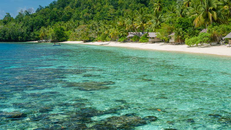 Bamboo Huts on the Beach, Coral Reef of an Homestay Gam Island, West Papuan, Raja Ampat, Indonesia. Bamboo Huts under Palm Trees of an Homestay on Gam Island stock photo