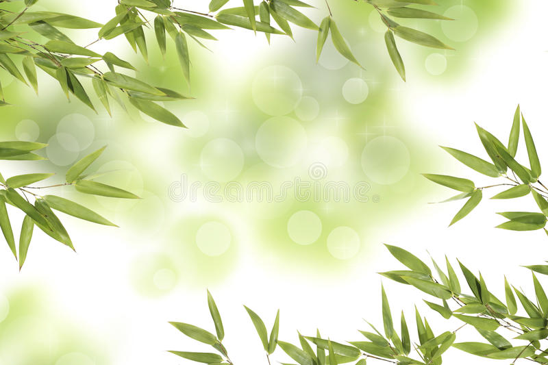 Bamboo leaves. On sparkling background royalty free stock photo