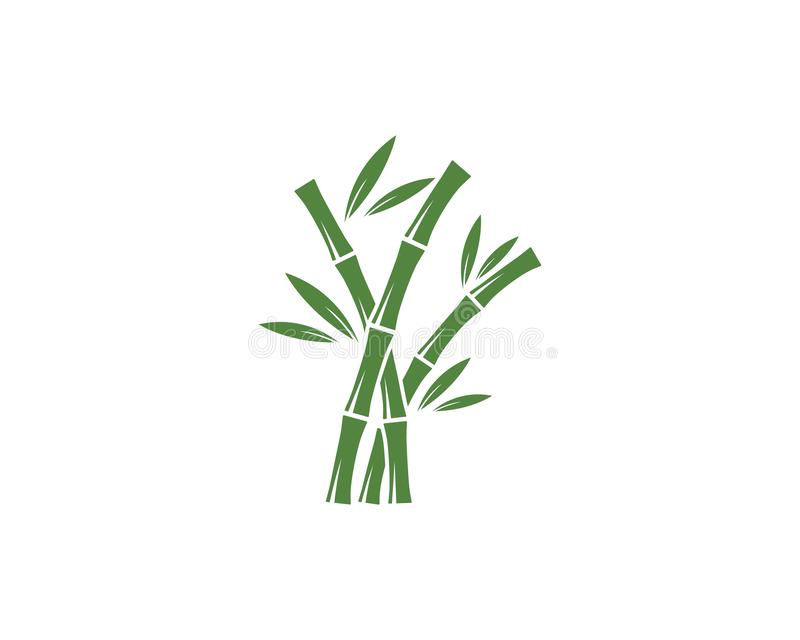 Bamboo logo vector. Bamboo logo with green leaf vector icon template, design, illustration, nature, plant, background, symbol, art, isolated, tree, spa, natural royalty free illustration