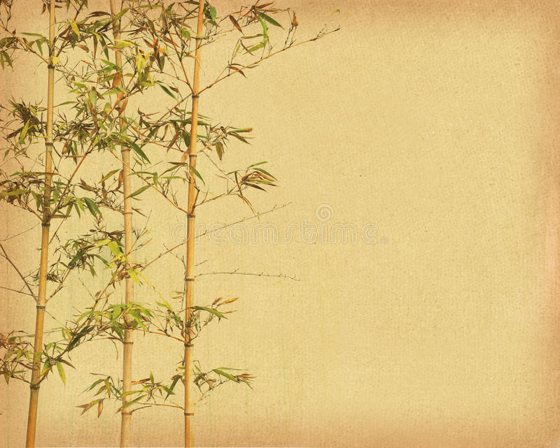Download Bamboo On Old Grunge Antique Paper Stock Photo - Image: 26142980