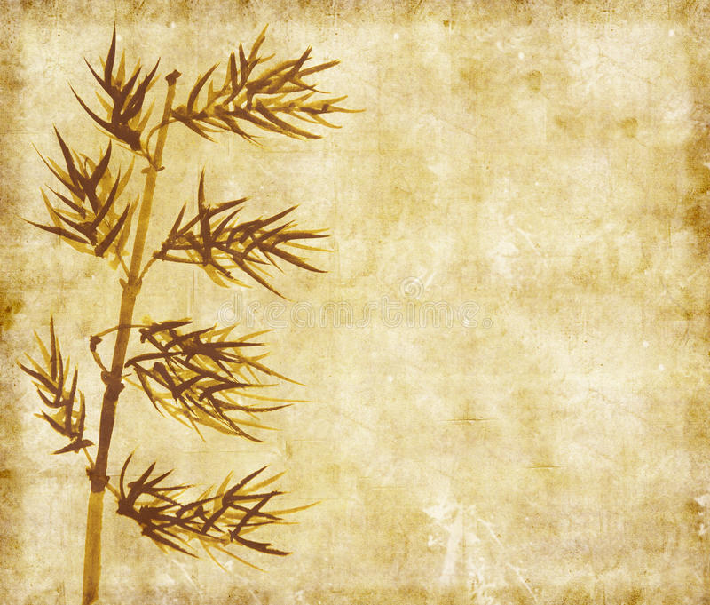 Download Bamboo On Old Grunge Paper Texture Stock Images - Image: 23252484