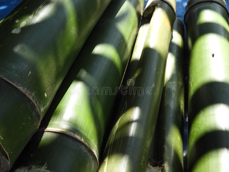 Bamboo pieces used to make bamboo chicken or bamboo chicken biryani kept for sale. Bamboo pieces used to make bamboo chicken or bamboo chicken biryani: a stock photo