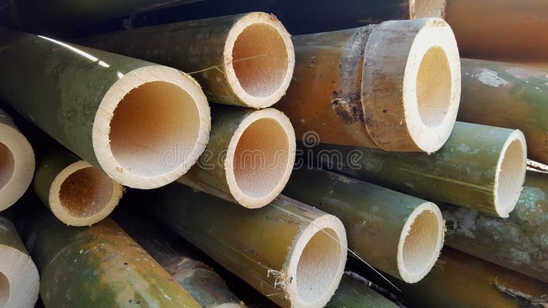 Bamboo piles, the basic ingredients of various handicrafts. Bamboo piles, the basic ingredients of various household handicrafts and art stock images