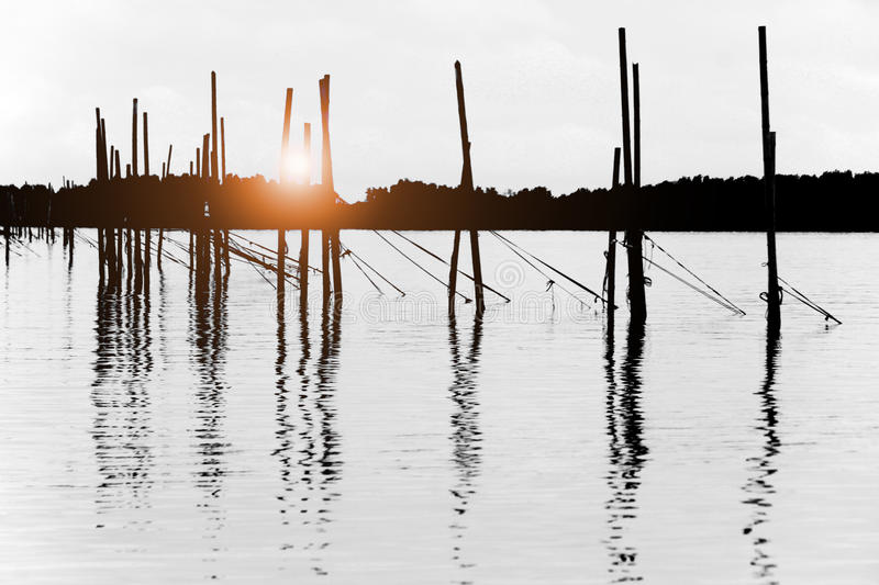 Bamboo pole in the sea Abstract nature background stock image