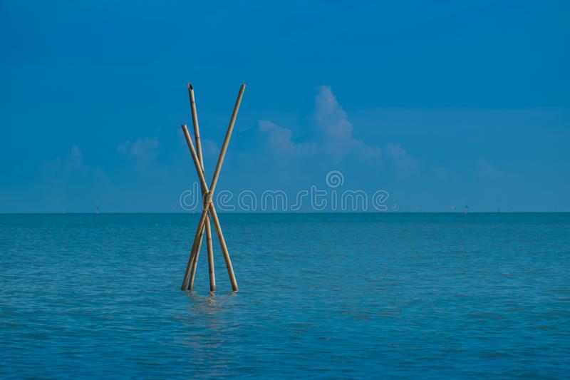 Bamboo prick in the sea is one of the tools in fishing stock images