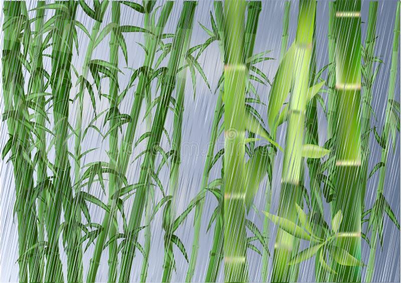 Bamboo and rain stock illustration