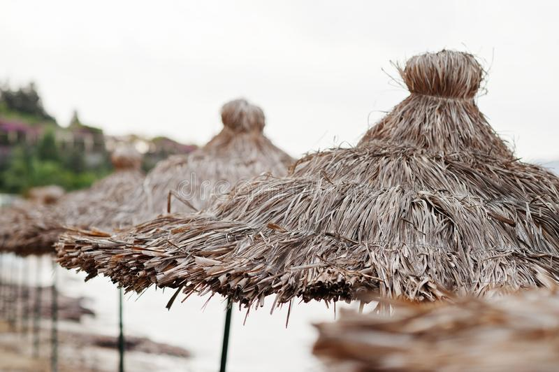 Bamboo and reed straw beach umbrellas.  stock photography