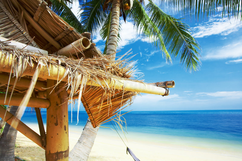 Download Bamboo roof stock photo. Image of hovel, beach, roof, azure - 2330014