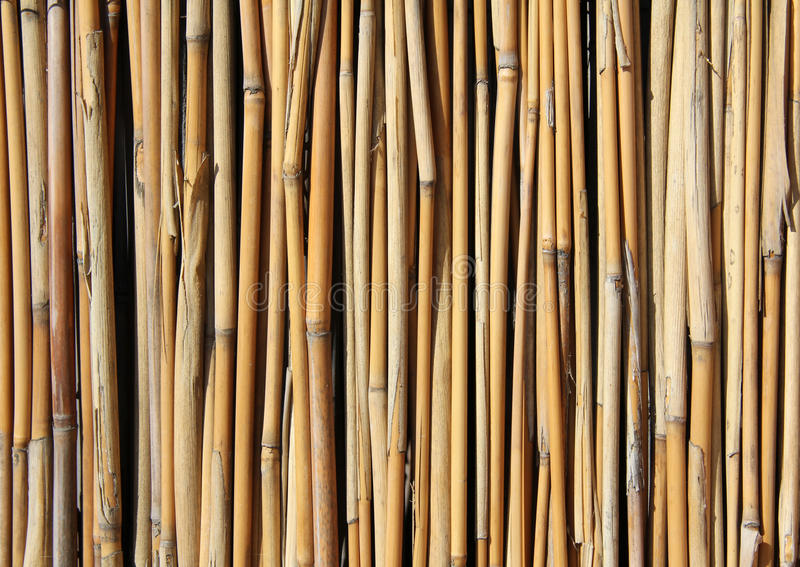 Download Bamboo set stock photo. Image of brown, abstract, vertical - 21524756