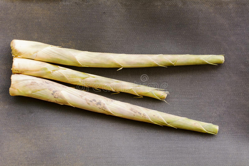 Bamboo shoots or bamboo sprouts are the edible shoots stock images