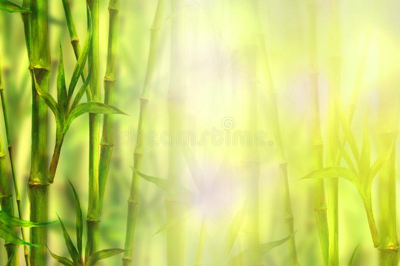 Bamboo forest spa background. Watercolor hand drawn green botanical illustration with space for text royalty free stock images