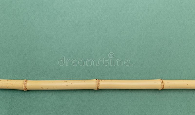 Bamboo stick on a green. Background royalty free stock images