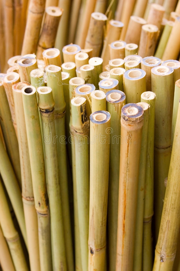 Download Bamboo Sticks Vertical Royalty Free Stock Image - Image: 2773816