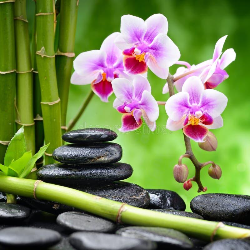 bamboo stones zen 图库摄影