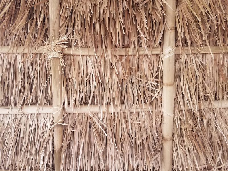 Bamboo and straw ceiling. A brown bamboo shoot and straw or hay ceiling stock photography