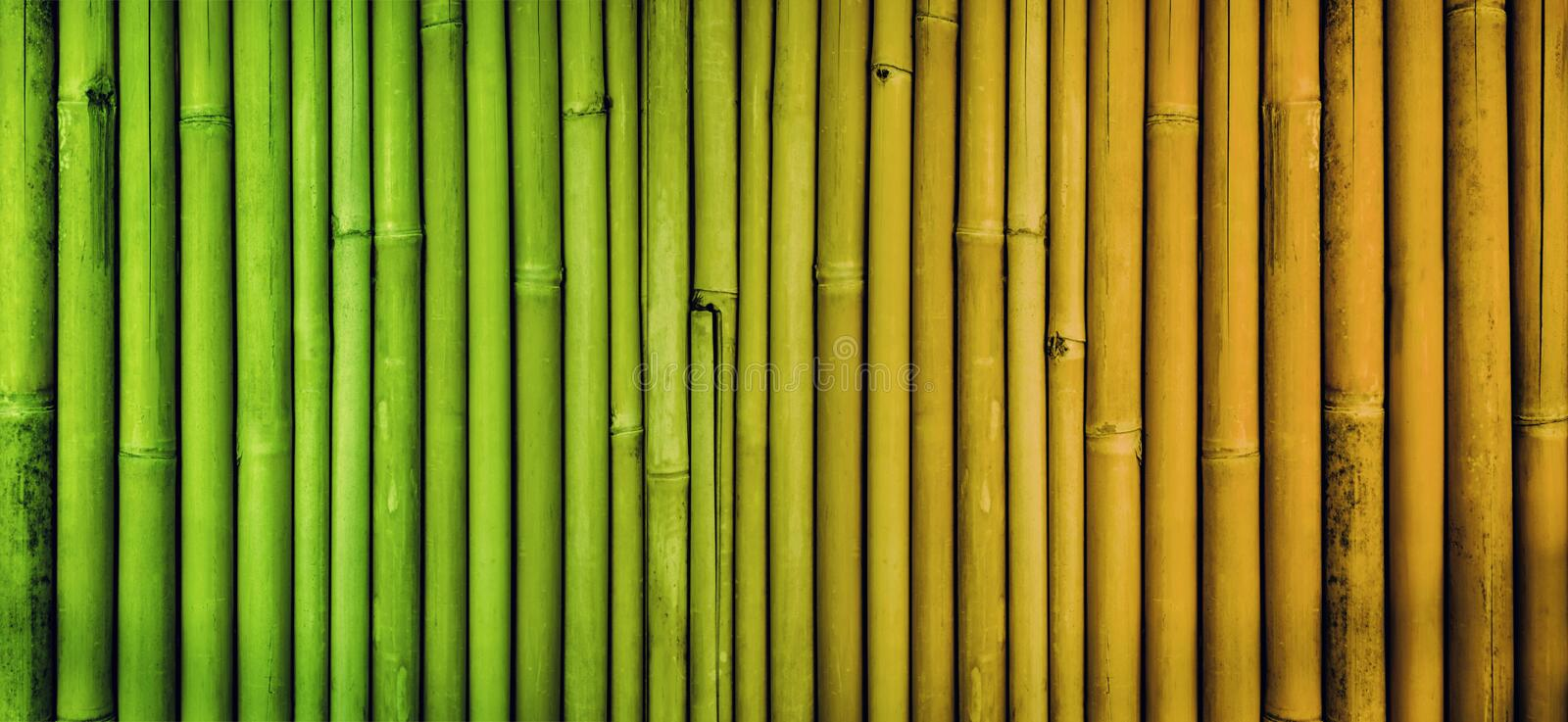 Bamboo texture background, faded bamboo fence wall, aging process bamboo stock images