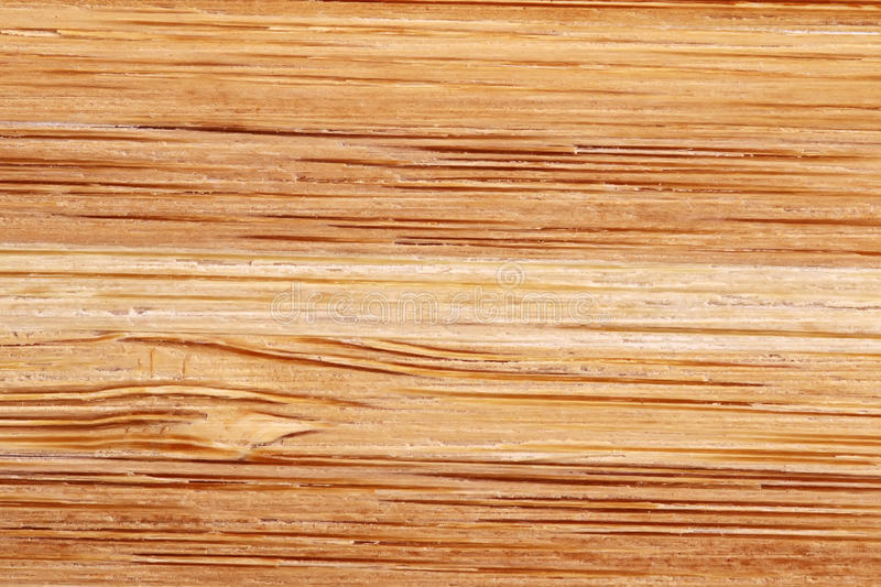 Download Bamboo Texture With Horizontal Stripes Stock Image - Image: 31015879