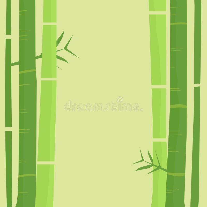 Bamboo tree background stock images
