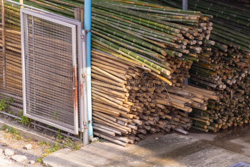 Bamboo trunk material stacks used in the construction industry. The bamboo can be used for many things stock photo