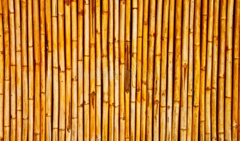 Download Bamboo wall stock photo. Image of lines, bamboo, china - 21187656