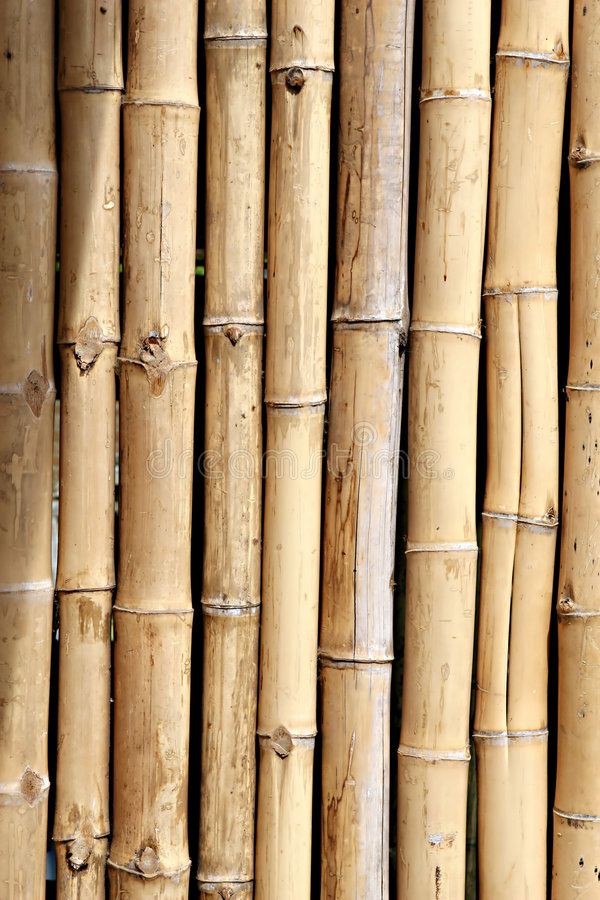 Download Bamboo Wall stock photo. Image of material, garden, brown - 7057352