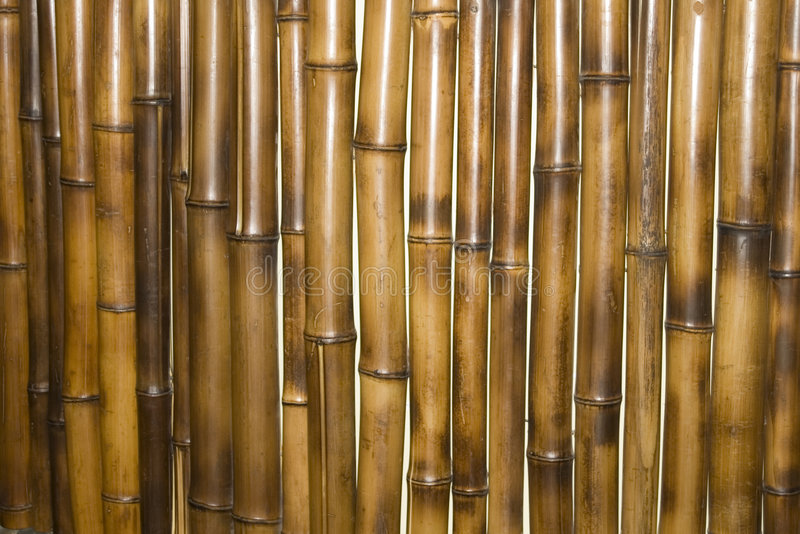 Bamboo wall as background stock images