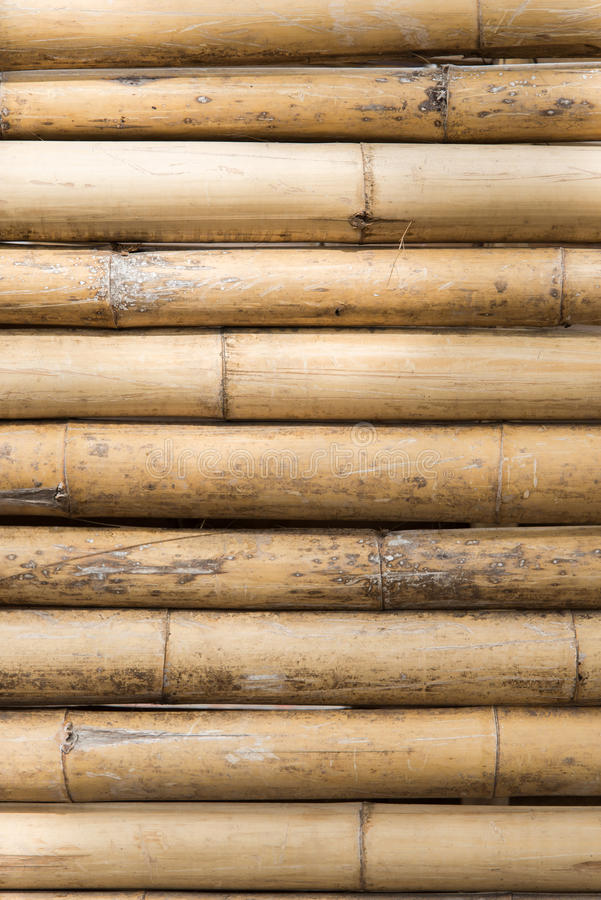 Bamboo wall. Pattern background texture stock image