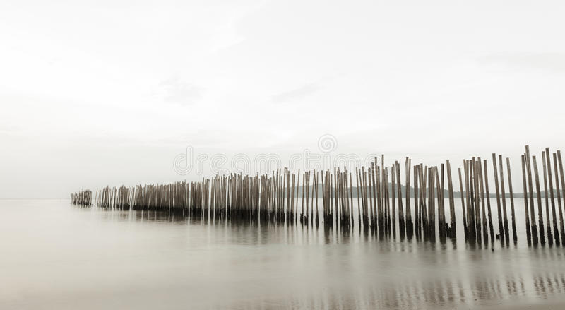 Bamboo wall in the sea, long exposure style. stock photography