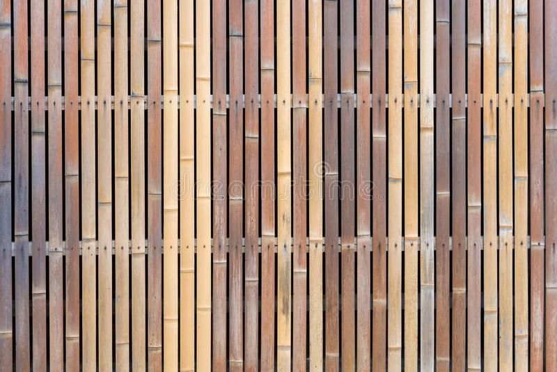 bamboo wall texture background stock image