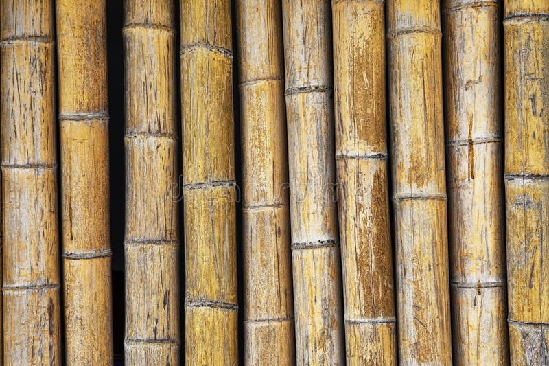 Bamboo wall used for backgrounds in Asia stock photography