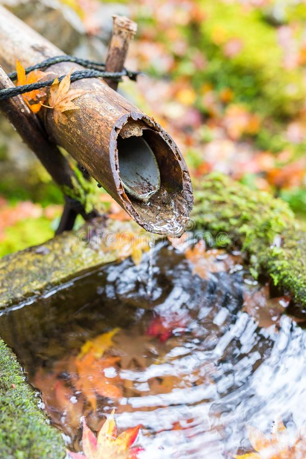 Bamboo water fountain in autumn season royalty free stock images