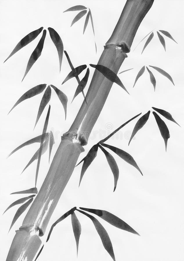 Bamboo watercolor painting study royalty free illustration