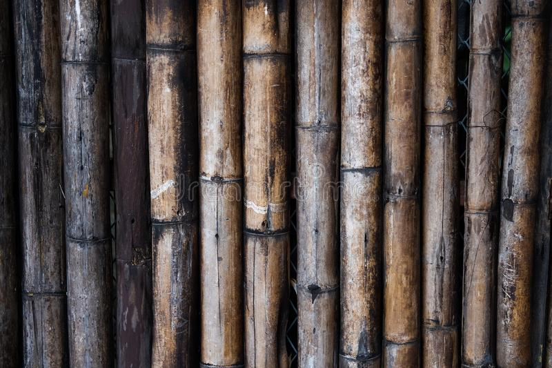 Bamboo wood wall royalty free stock image
