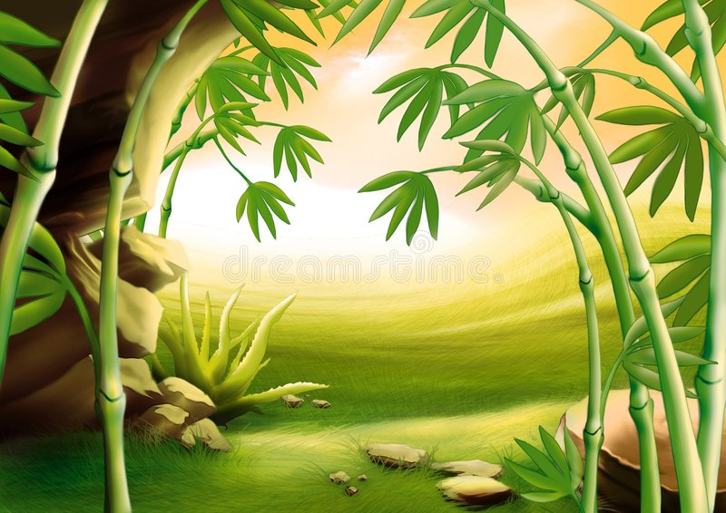 Bambou illustration stock