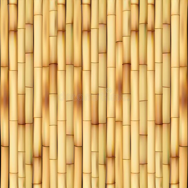 Bambou illustration de vecteur