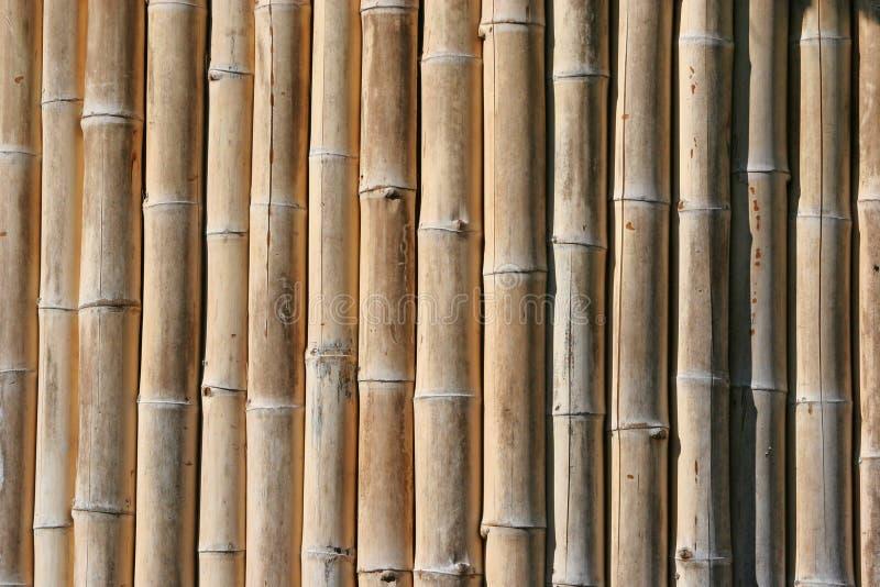 Download Bambou photo stock. Image du asie, roseaux, porcelaine - 727894