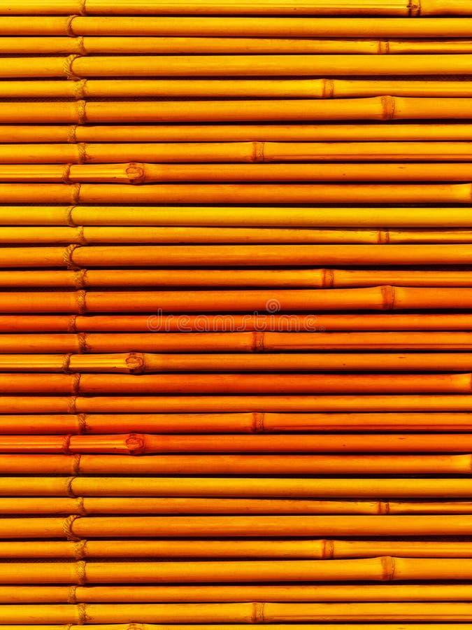Bambou de centrale de tiges photo stock