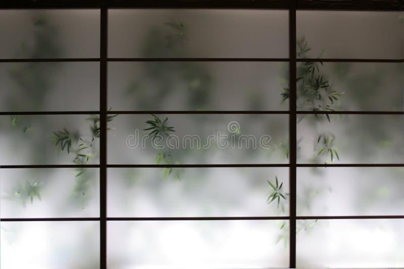Bambou derrière l'écran photo stock